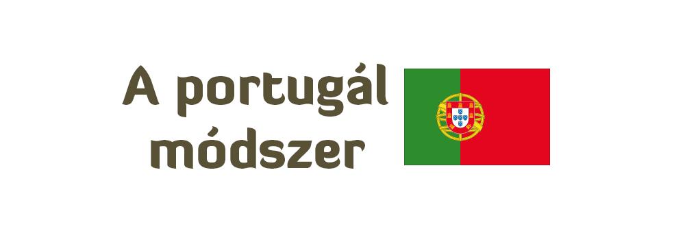 Portugál email adatbázis építés